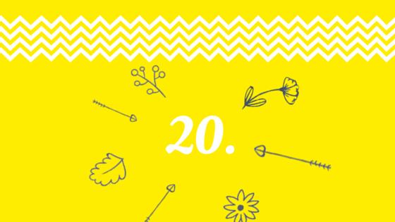 úkol 20
