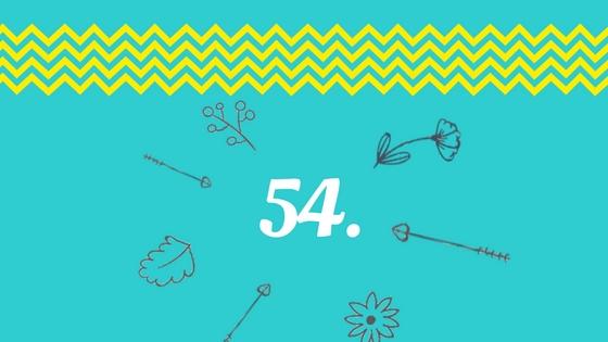 úkol 54